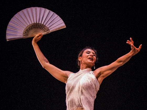 Free Summer Concert Series at Chandler Center for the Arts presents Jacome Flamenco