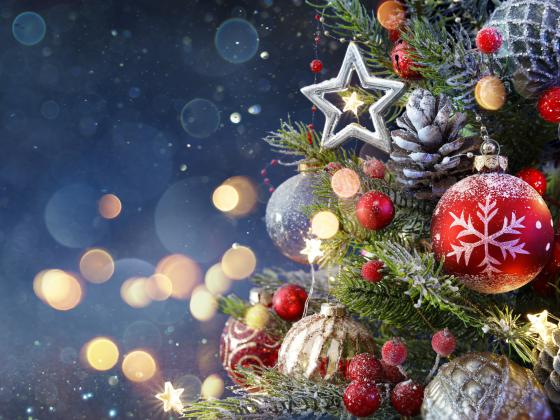 Under the Stars at Chandler Museum - Holly Jolly Christmas