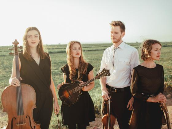 Three women and a man stand in a green field, the golden glow of sunset on their faces as they hold their string instruments.